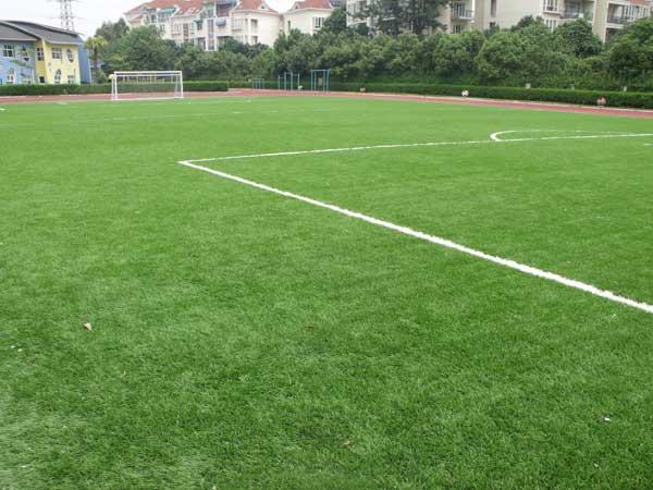 北师da南奥试验学校ren造草足球场