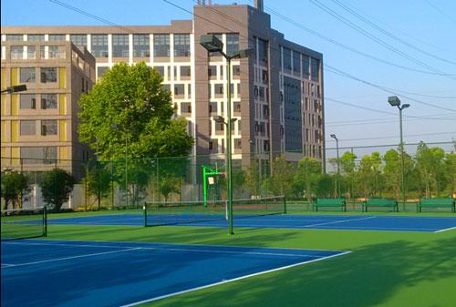 惠州龙光di产丙烯酸篮球场网球场